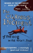The Curious Incident of the Dog in the Night-Time by Mark Haddon.